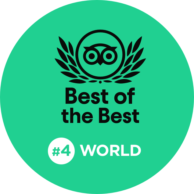 Best of the Best #4 World