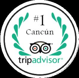 TripAdvisor Ranking #1 Cancún