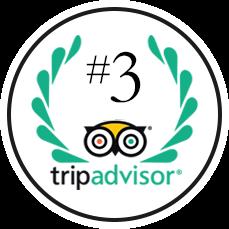 TripAdvisor Ranking #3 Cancún