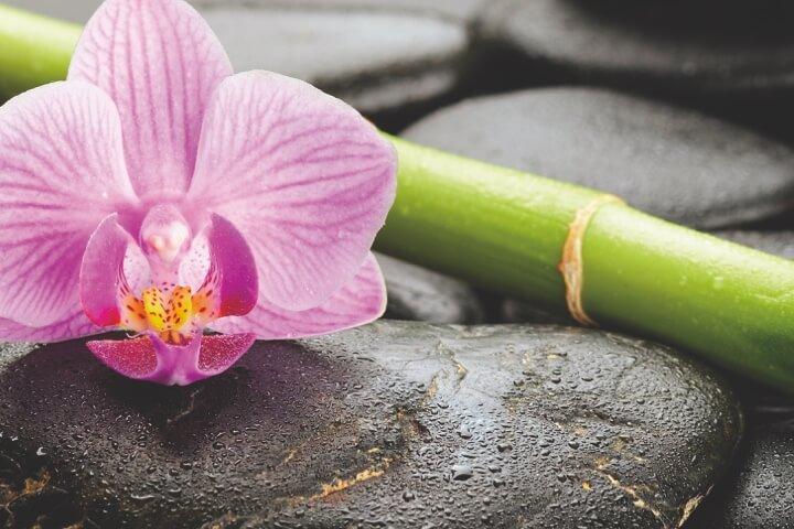 Servicio de masaje SHANTI
